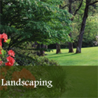 cutting edge lawn care  can make your lanscaping the envy of the neighborhood!